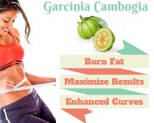 75% HCA Fiiyoo garcinia cambogia weight loss extracts PLUS slim creams for fast slimming products