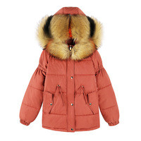 2018-New-Fashion-Short-Winter-Women-Parkas-Hooded-Big-Fur-Collar-Female-Outerwear-Loose-Thick-Warm.jpg_200x200