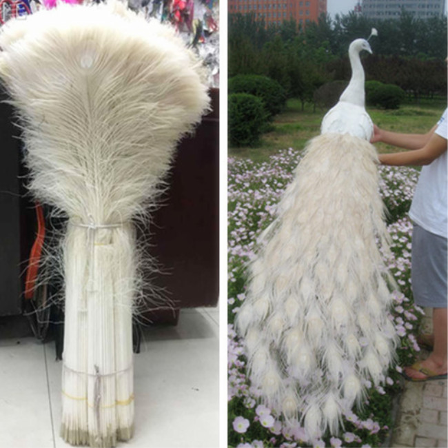 Wholesale 50pcs Beautiful Natural White Peacock Feather Eye 70-80 Cm/28-32 Inch Decorative Celebration Clothing Accessories Diy