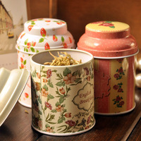 B314 5pcs Lot Wholesale Pastoral Wind Tea Food Storage Tank Creative Portable Mini Retro Sealed Tin