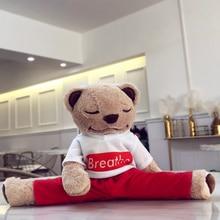 Yogi Bear phone Case For Samsung S10 5G S9 S8Plus S7 S6 edge A70 10 80 Cute Warm Fluffy Phone Cover For Galaxy Note 10 9 8 Teddy