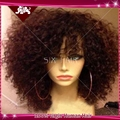 Short Kinky Curly Lace Front Wigs Brazilian Virgin Glueless Full Lace Wigs 100 Human Hair Wigs Full Bangs For African Americans
