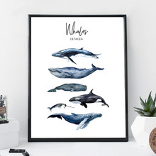Watercolor Whales Canvas Art Print Painting Poster Wall Decor , Marine Art Cetacea Poster Wall Pictures For Home Decoration(China)
