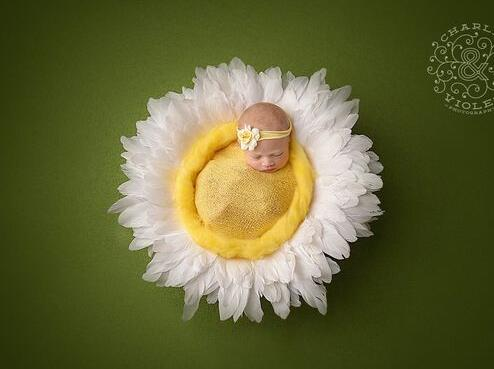 Baby Wrap Layer nest newborn photography prop crocheted yarn nesting egg pod bowl in white feather photo prop Foto Studio Shoot накладки для пеленания candide коврик с валиками овальный baby nest 82x52