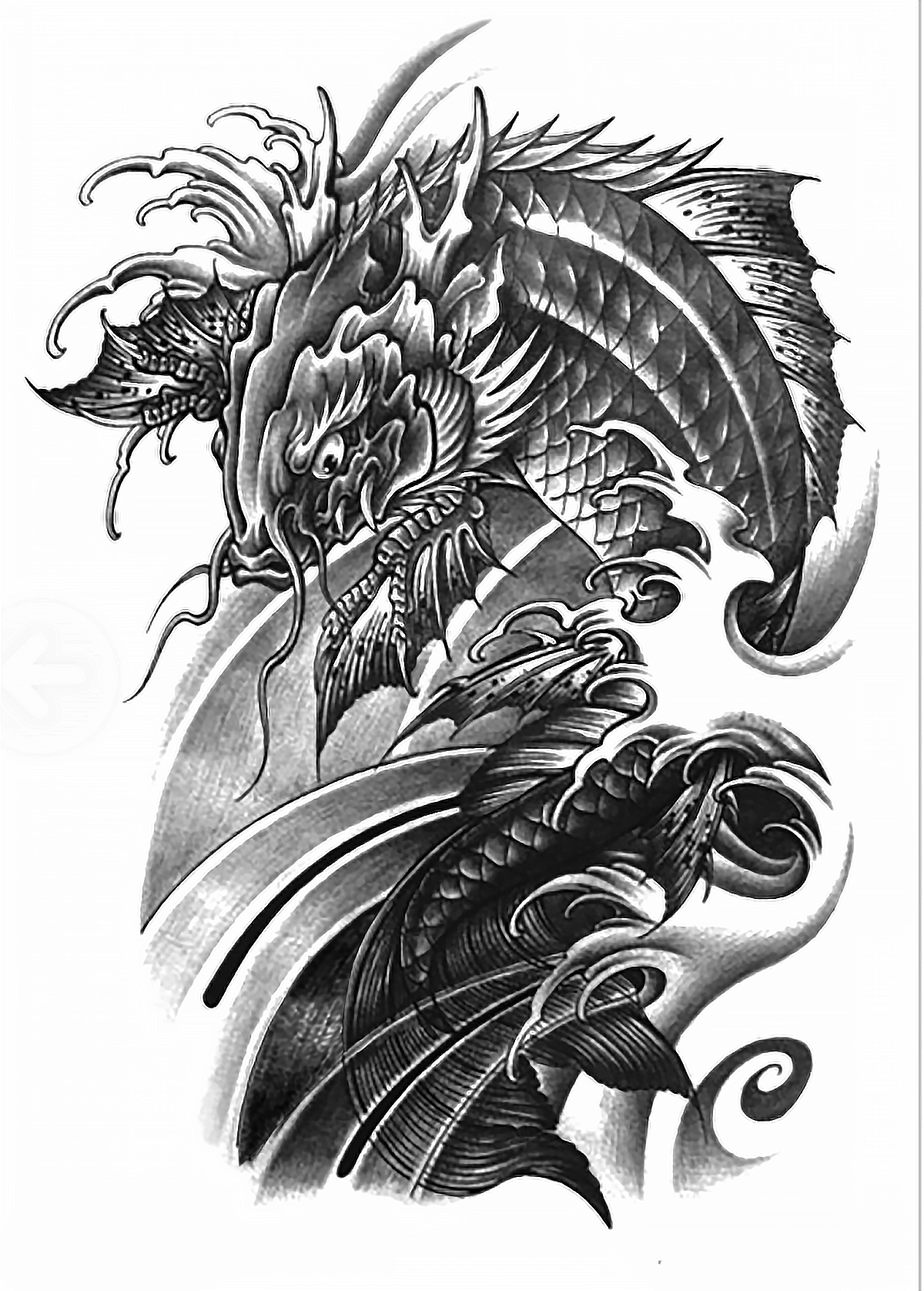 dragon carp tattoo images for tatouage. Black Bedroom Furniture Sets. Home Design Ideas