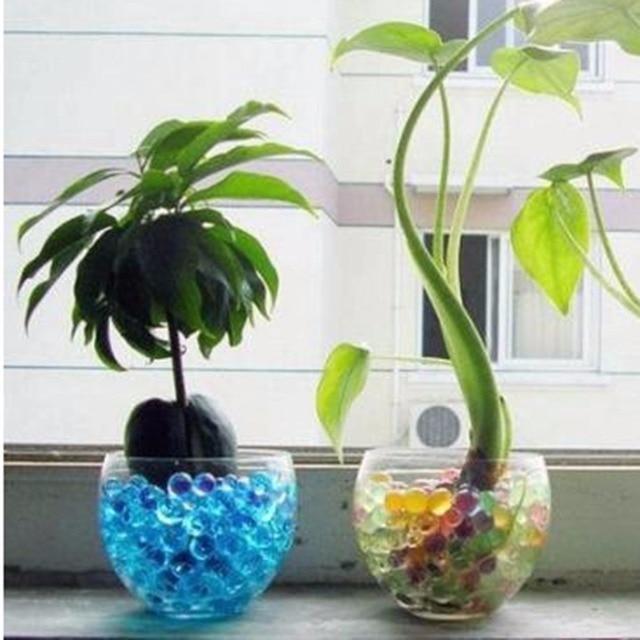 a0e63913b 5000 pcs contas de água planta flor da geléia de cristal lama do solo  pérolas de