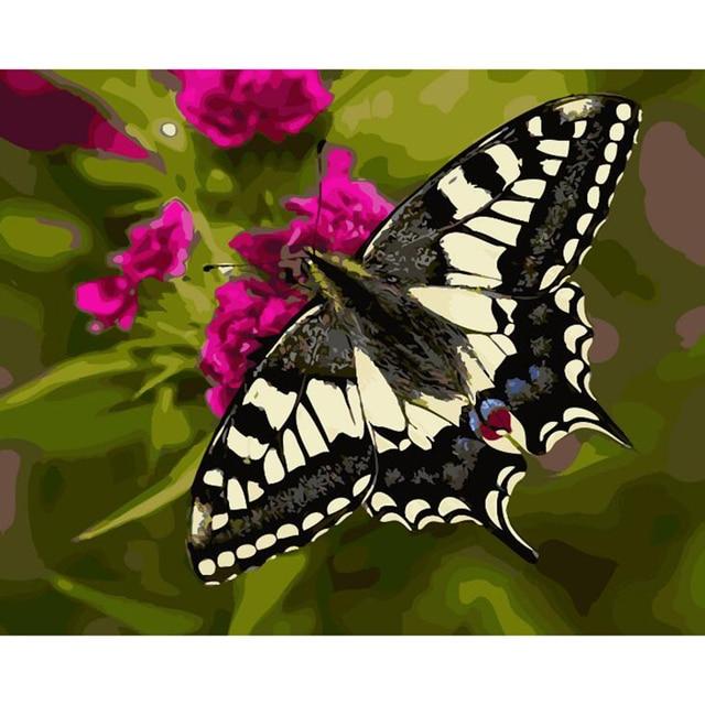 Bunga Dan Kupu Kupu Gambar Lukisan By Nomor Dilukis Tangan Kanvas