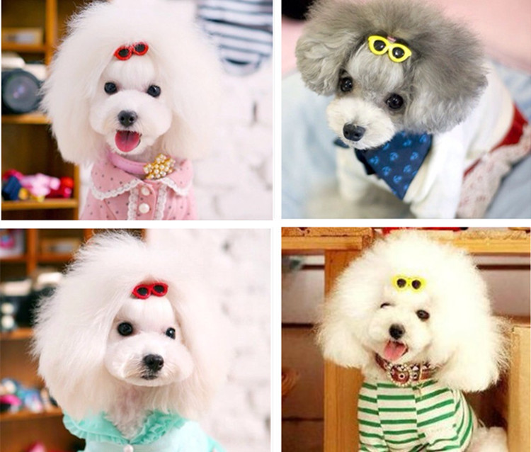 Most Inspiring Hair Bows Bow Adorable Dog - 2015-New-Pet-Dog-Hair-Bows-Clips-4CM-Cute-Doggie-Boutique-sunglasses-Dog-Accessories-50pcs-lot  Pic_776959  .jpg