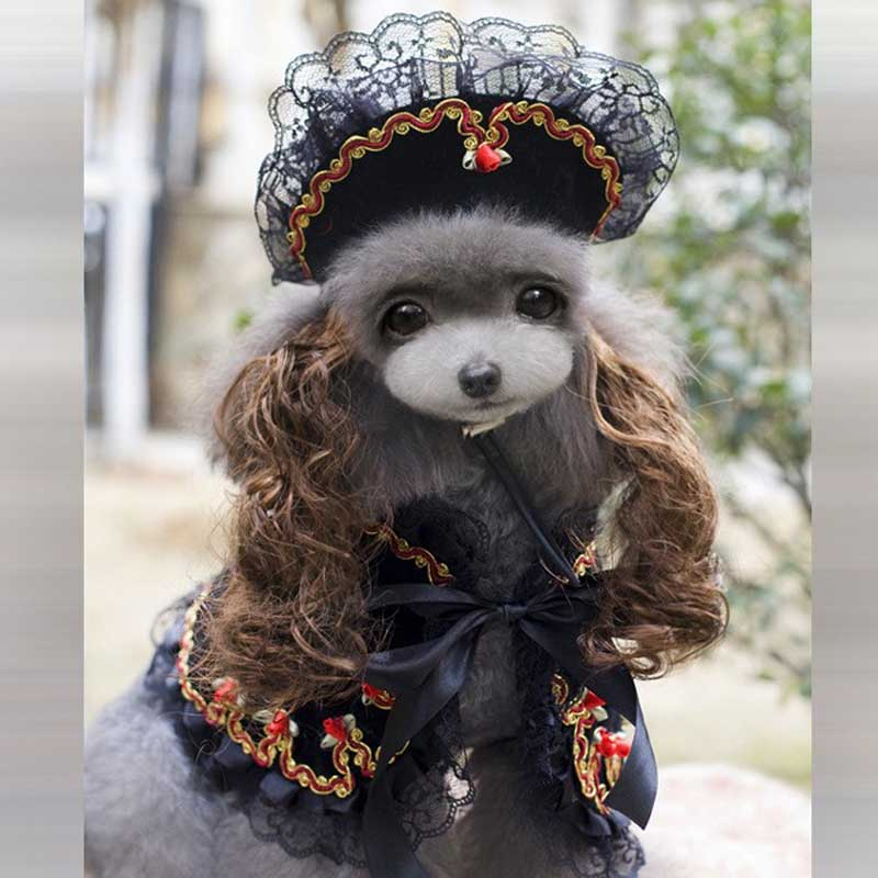 Us 1329 Lovely Dog Cat Pet Royal Princess Halloween Costume Dog Puppy Party Dresses Trench Clothes Dog Curly Hair Hat Cape Scarf Suit In Dog Coats