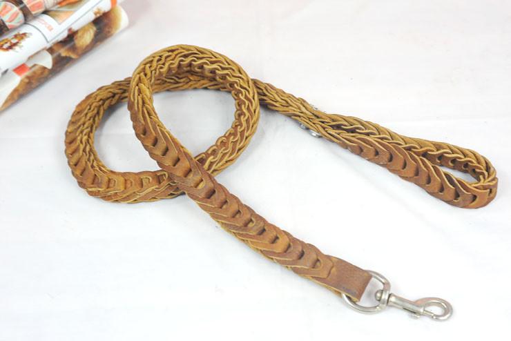 large dog leash (16)