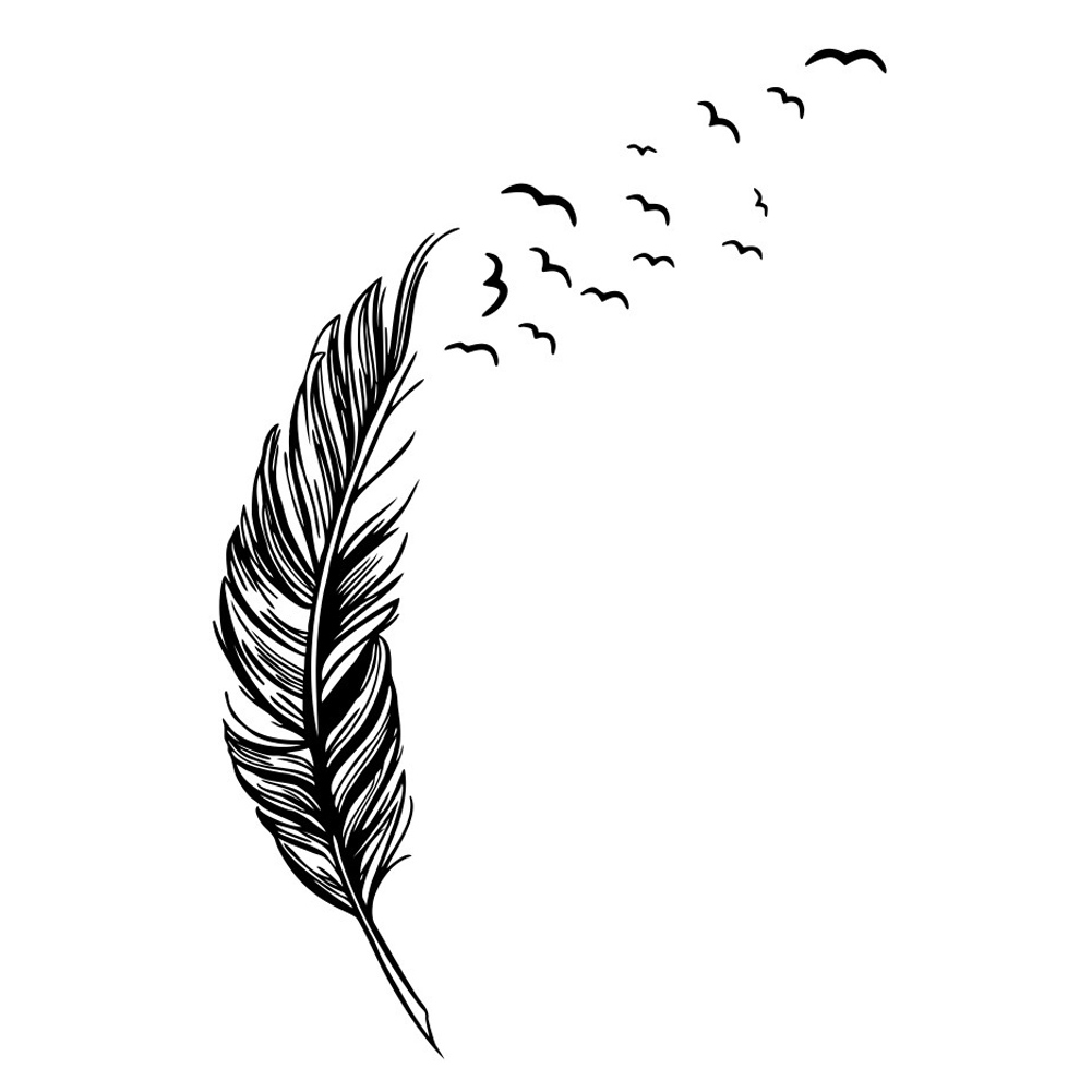 Black White Feather Art Vinyl Quote Wall Stickers Home