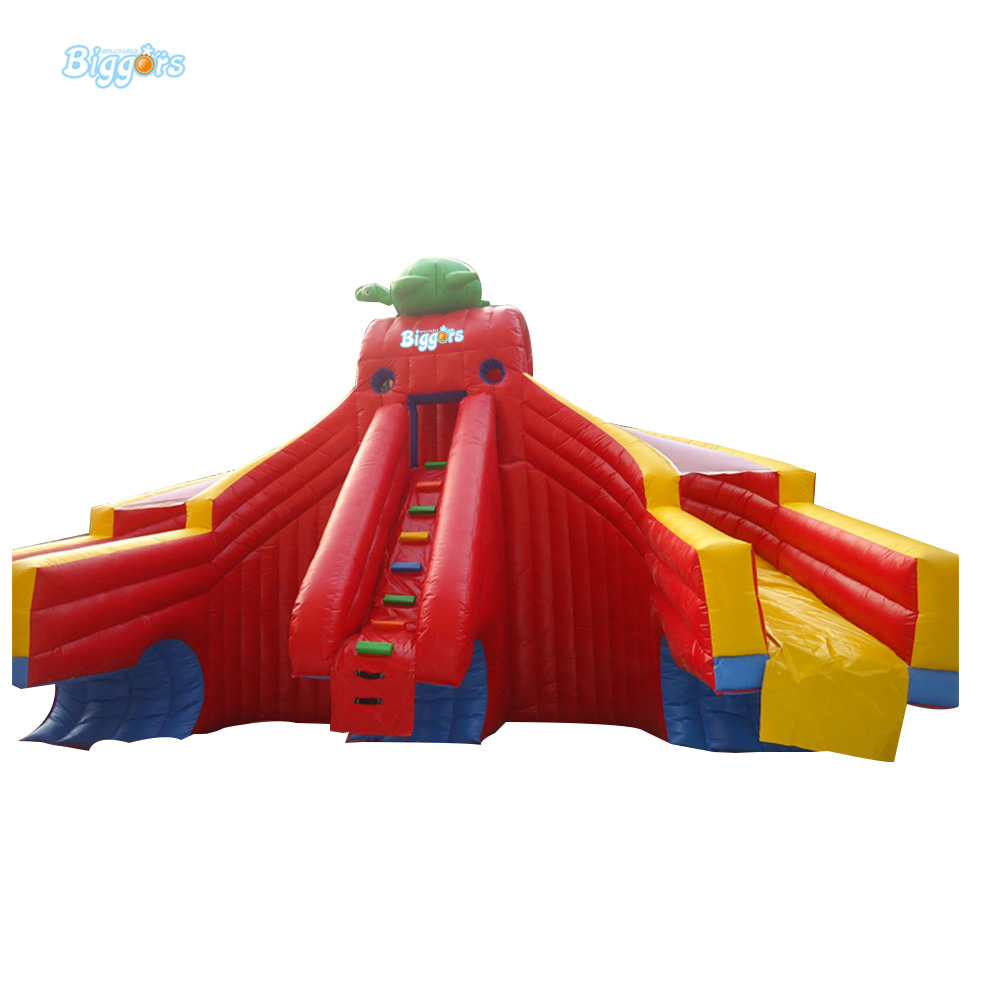 Inflatable Biggors Inflatable Double Lane Slide Stuck In Pool For Sale inflatable biggors combo slide and pool outdoor inflatable pool slide for kids playing