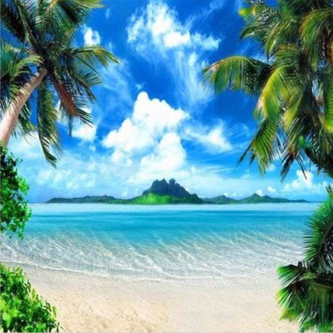 Palm Tree Beach: Large 8x8FT Palm Tree Backdrop Beach Background