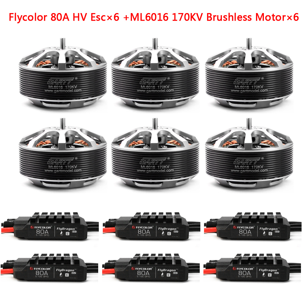 GARTT 6pcs ML 6016 170/310 KV Brushless Motor+6pcs Flycolor 80A HV Brushless ESC For Plant Protection Operations Hexacopter newest flycolor waterproof 80a hv brushless esc for agricultural rc drones diy quadcopetr multicopter