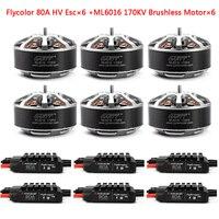 GARTT 6pcs ML 6016 170/310 KV Brushless Motor+6pcs Flycolor 80A HV Brushless ESC For Plant Protection Operations Hexacopter