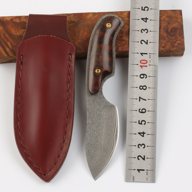 Damascus straight knife Little lamb fixed blade knife wood handle hunting camping knife with leather case outdoor hand tools damascus steel hunting knife fixed blade outdoor camping knife with wild cavel handle straight knife survived