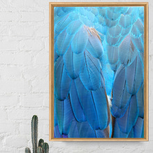 Canvas Art Print Blue Feather Pop Nordic Posters And Prints Wall Paintings For Living Room Pictures Salon Office