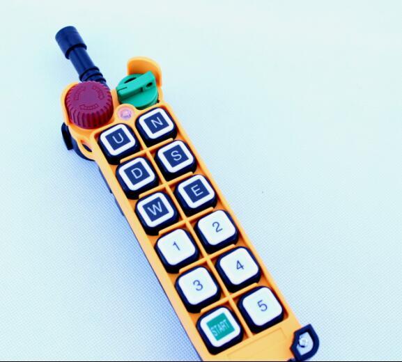 HS 12S 1 transmitter 1 remote 24v