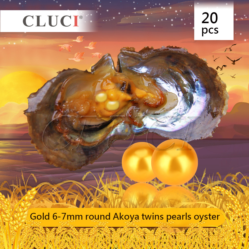 CLUCI free shipping 20pcs 6-7mm GOLD Round Akoya Twins Pearls in Oysters for Women Jewelry making, 40 pearls can get cluci free shipping get 40 pearls from 20pcs 6 7mm aaa blue round akoya oysters twins pearls in one oysters