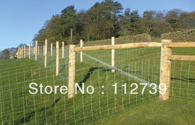 Width Of Mesh Opening 100mm, Height 60mm, Roll Field Fence, Fixed ...