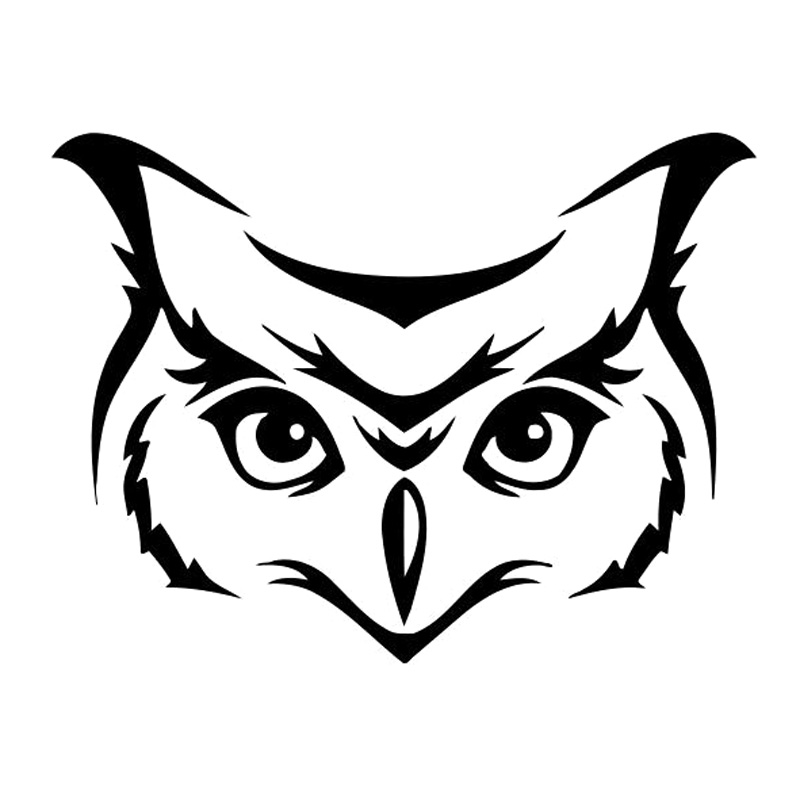 Cmcm Wild Animal Owl Bird Car Styling Decor Stickers Decals Vinyl Black Silver S  In Car Stickers From Automobiles Motorcycles On