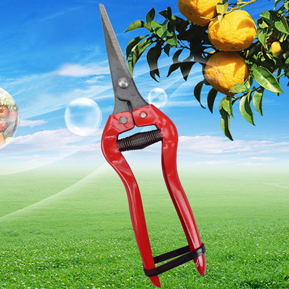 For Flower Fruit Tree Pruner Trimmer Pruning Carbon Steel Shears Tools Garden Scissors Straight Head Garden Shear
