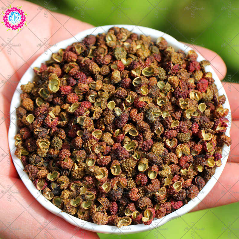 50PCS Organic Zanthoxylum Simulans plant Pepper Herb Vegetable plant,Medical Use Plant Chinese Specialty Kitchen Seasonings
