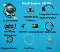 EFI motorcycle Motorbike Motocross ATV scooter Snowmobile small engine Electronic Fuel Injection kit GY6 Lifan CG zongshen QJ