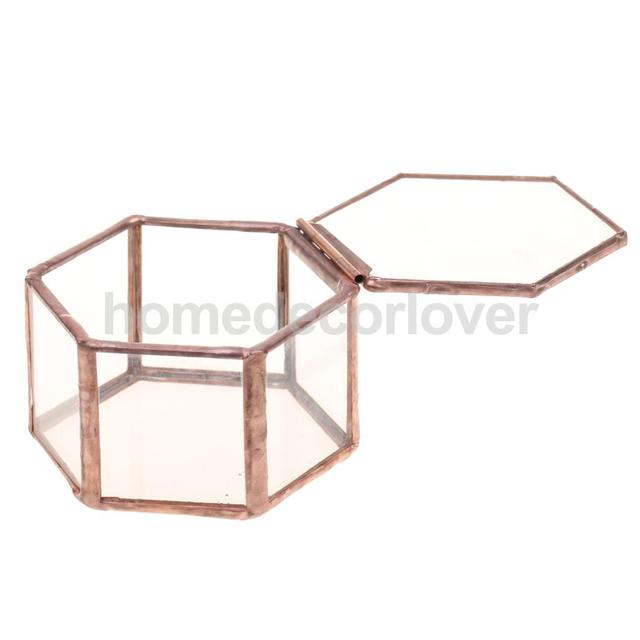 Mini Hexagonal Clear Glass Jewelry Box Tabletop Succulent Plants Planter