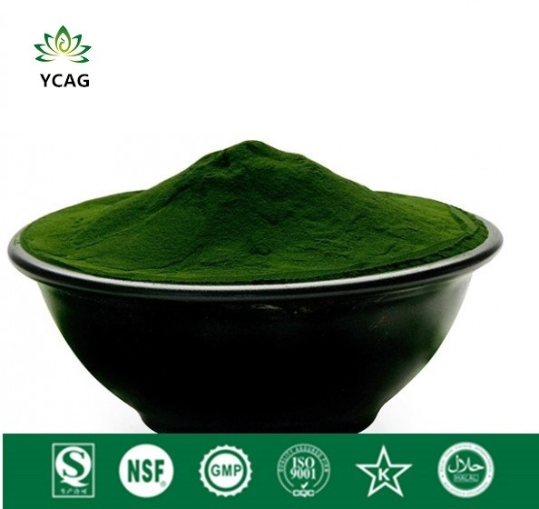 Chlorella Powder, Superior Chlorophyll Carotenoids and Protein, Balance Blood Pressure and Blood Sugarchlorella blood and water