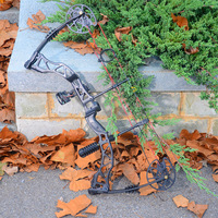 35lbs 70lbs Archery Compound Bow Hunting Compound Bows with Complete Accessories