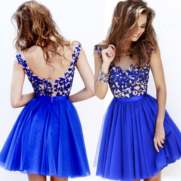 5d2fa4acf HK1481L Hot Light Deep Blue Vestidos Cortos Graduacion Color Fucsia Short  Prom Dresses For Girls Embroidery