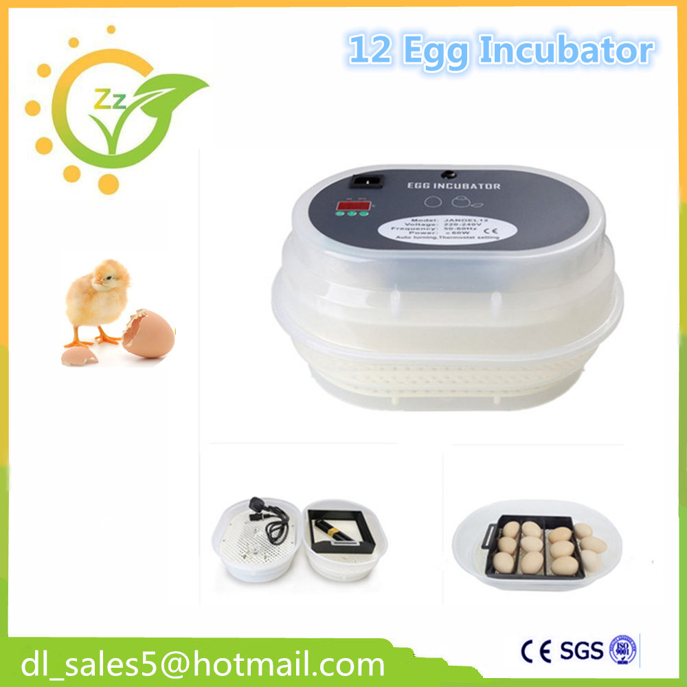 China cheap hathery 12 egg incubator automatic brooder machines for hatching eggs china cheap hathery 12 egg incubator automatic brooder machines for hatching eggs