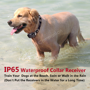Image 5 - Rechargeable Waterproof Electronic Dog Training Collars Stop Barking LCD Display 800 yard Remote control Shock virbration tone