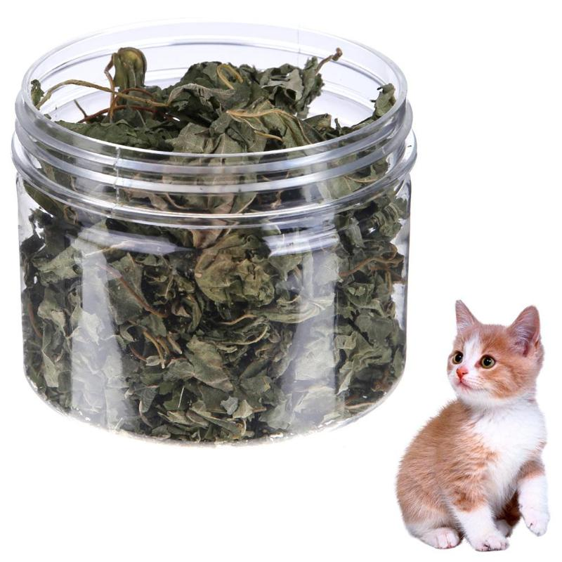 300ml 100% Natural Premium Cat Toys Organic Catnip 10g Cattle Grass Menthol Flavor Funny Cat Treats Funny Toys for Kittens