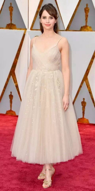 89th Annual Academy Awards Felicity Jones Celebrity Dresses with Spaghetti Straps Evening Dresses Prom Party Gowns Vestidos 1