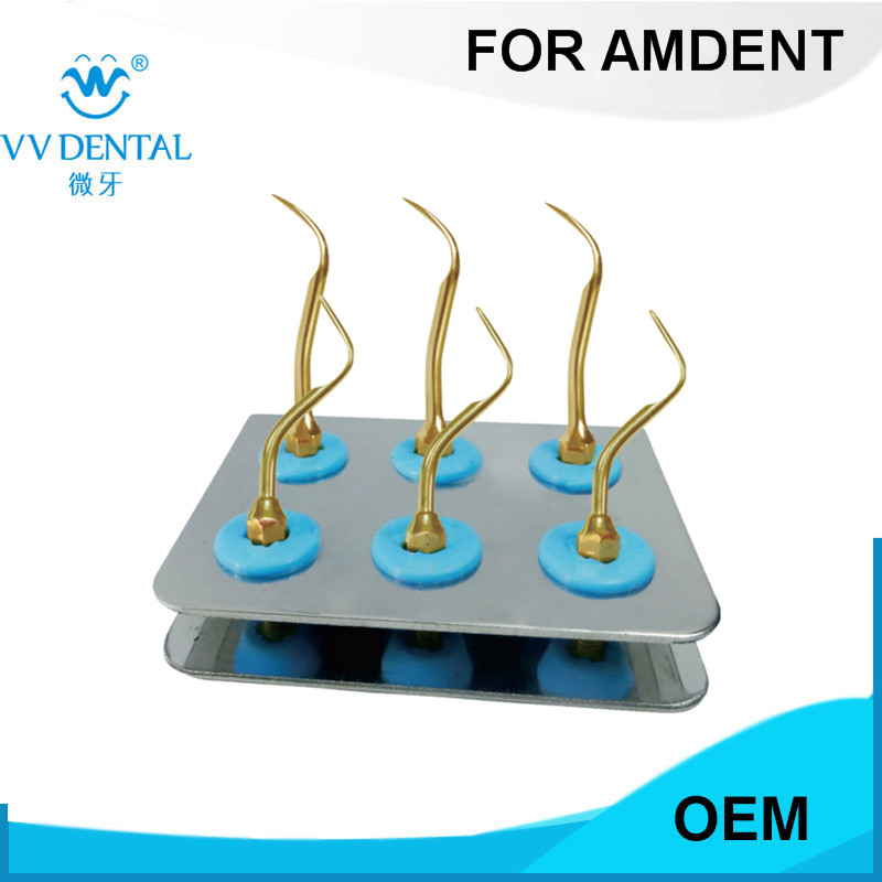 10 PCS ASKG AMDENT home dental hygiene kit WITH AMDENT TIPS #37 #39 professional dental supplies цена
