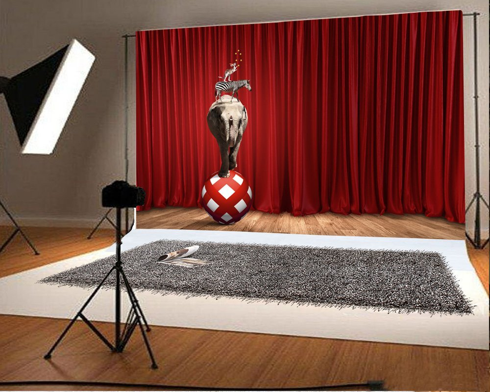 Circus animals red ball elephant zebra red curtains  stage vintage wood Backgrounds Vinyl cloth Computer print wall backdrops vintage castle retro medieval architecture stone bridge mountain backdrop vinyl cloth computer print wall backgrounds