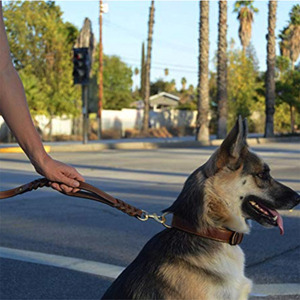 Image 2 - Braided Real Leather Dog Leash Double Handle pet Walking Training Leads Long Short rope for German Shepherd Medium Large Dogs