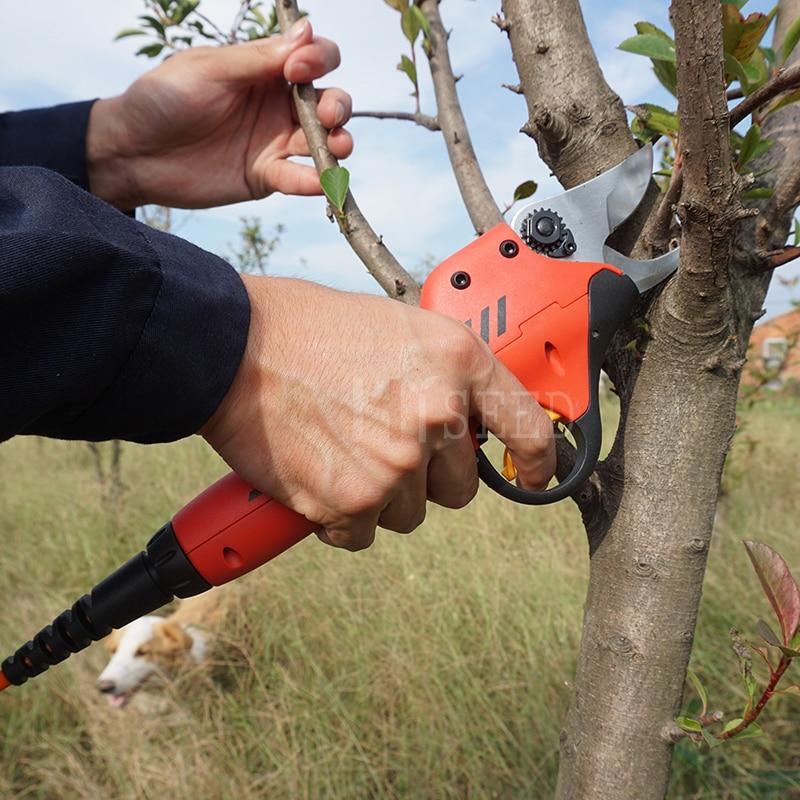 Forbici elettriche a batteria al litio da vigneto e frutteto con la - Attrezzi da giardinaggio - Fotografia 1