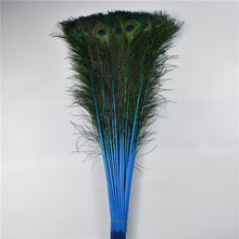 Whole 70 80cm 28 32inch Natural Lake Blue Pea Feathers For Crafts Home Hotel Room Vase Decor Wedding Decoration Plumes