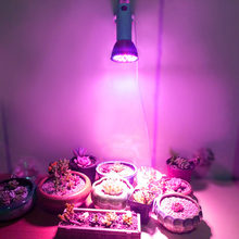 Plants Growing Lamp Bulb Full Spectrum E27 Led Grow Light Bulb 8W 28LEDs for DIY Hydroponics Plant Flower High Quality(China)