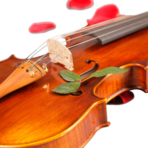 Image 5 - Violins Professional String Instruments Violin 4/4 Natural Stripes Maple Violon Master Hand craft Violino with Case Bow Rosin