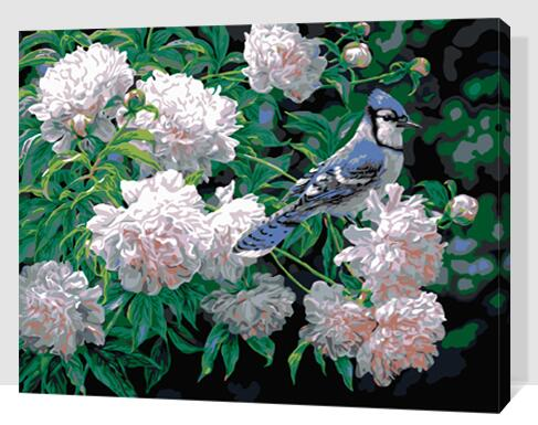 MaHuaf-W1413 bird and flowers coloring by numbers on canvas hand painted cuadros picture painting for wall decor