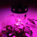 Full Spectrum 132W Double Chip LED Grow Light Red/Blue/White/UV/IR For hydroponics and indoor plants