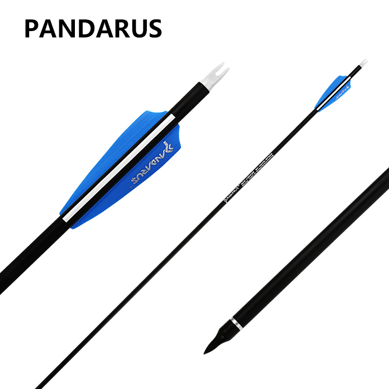 PANDARUS Archery arrow 28/30/32 Inch Spine 500 Carbon Practice Hunting Arrows Removable for Youth Compound Recurve Bow Target 12 archery carbon arrow spine300 340 400 500 600 fluorescent yellow shaft compound bow shoot id6 2mm protect ring nock