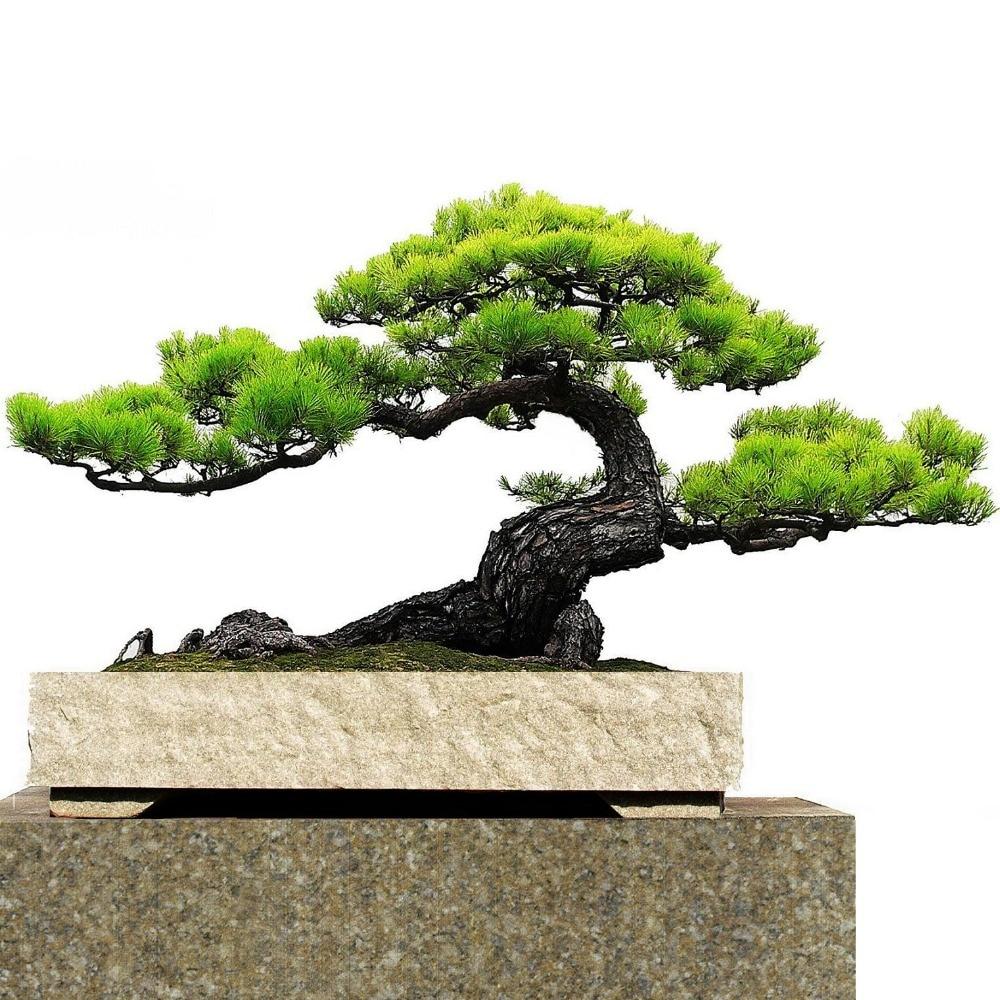 japanese garden decor reviews - online shopping japanese garden