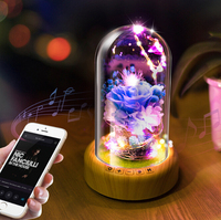 Romantic Rose Glass Bottle Lamp with String light+Rechargeable Wireless Bluetooth Speaker Christmas Home Decor Lamp