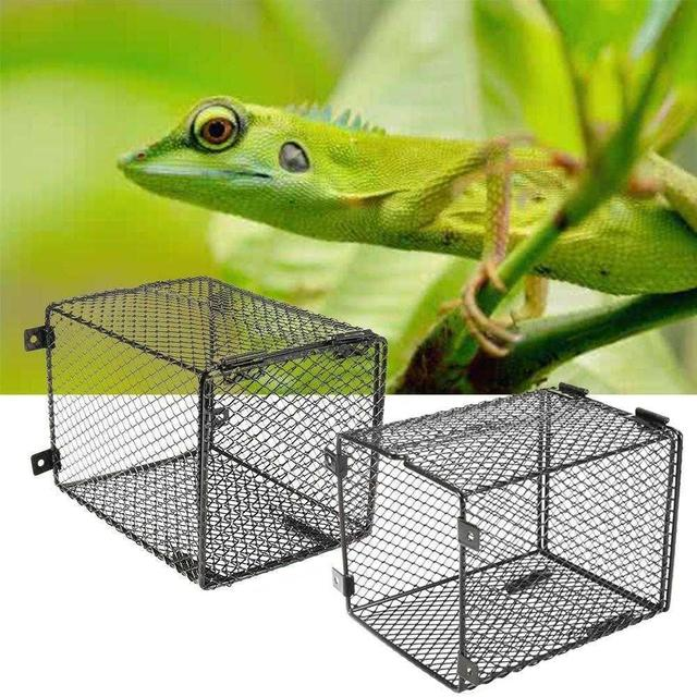 LanLan Square Reptile Anti-scald Lamp Cover for Heating Light Reptile Protection