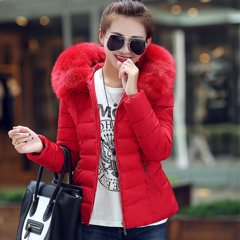 Winter Jacket Women 2017 Fashion winter coat women hair collar short paragraph coat thicker down jacket cotton warm jacket